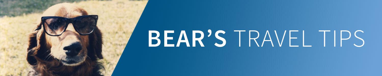 Bear's Travel Tips